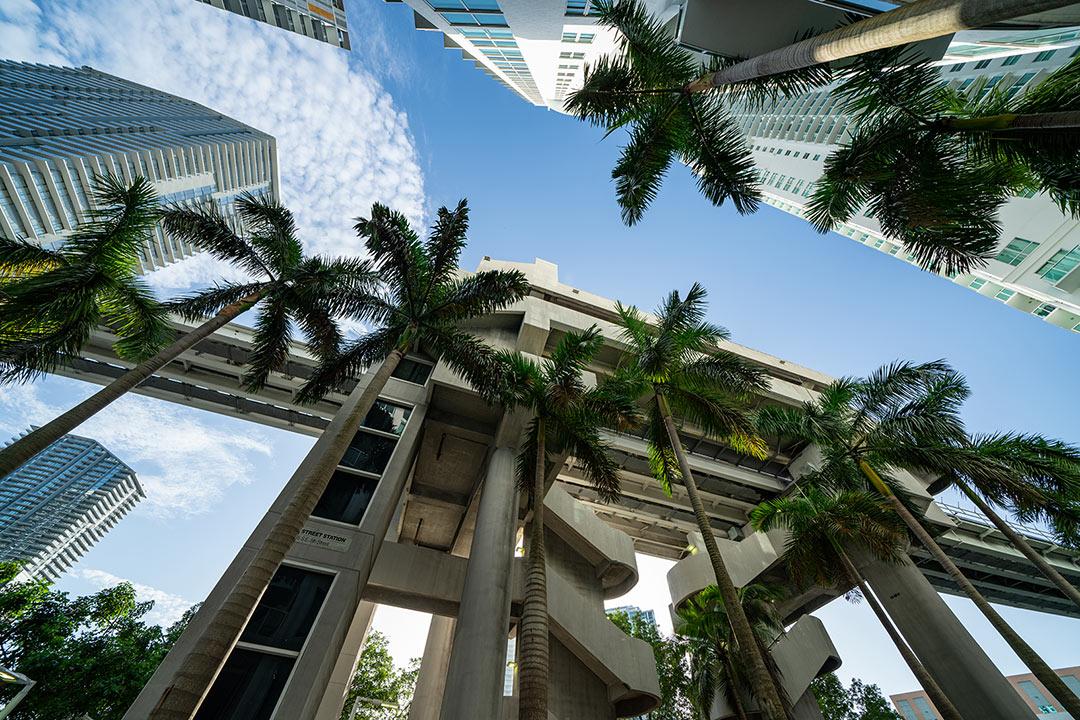 Complex_Commercial_Lawyers_Ft_Lauderdale